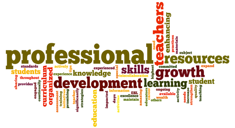 Professional development for all our teachers in Auckland CBD, Tauranga, Blockhouse Bay, West Auckland, Manurewa, Otumoetai, Newmarket, South Auckland